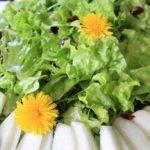 Ruoka Voikukkia salaatissa (2)